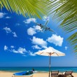 Tropical beach with coconut tree — Photo