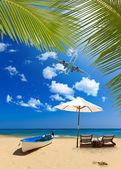 Tropisk strand med kokosnöt träd — Stockfoto