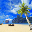 Tropical beach with coconut tree — Stok fotoğraf