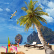 Tropical beach of Phi Phi island — Stock Photo