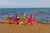日出时在海滩上的海星 — 图库照片
