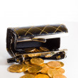 Purse with gold coins — Stock Photo #32698537