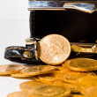 Purse with gold coins — Stock Photo