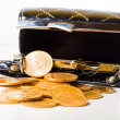 Purse with gold coins — Stock Photo #32698641