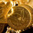 Five Dollars gold coins — Stock Photo #33499003