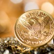 Five Dollars gold coins — Stock Photo #33557943