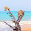 Stockfoto: Straw hats on beach