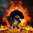 Dragon at hell's gates — Stock Photo