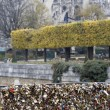 Love locks in Paris bridge symbol of friendship and romance — Foto Stock