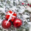 Closeup of Christmas ball with pine branch — Stock Photo