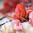 Fresh seafood in fish market — Stock Photo #36872895