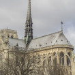 Notre Dame de Paris Cathedral — Stock Photo #36872933