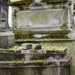 Old nameless tombstone in cemetery — Foto Stock #36962373