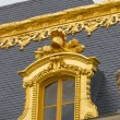 Details of the Versailles palace in Paris — Stock Photo #37106907