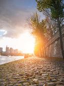 The Seine river in Paris France — Foto Stock