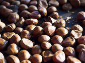 Roasted chestnut in Paris — Stock Photo