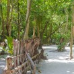 Maya bay Phi Phi Leh island, Thailand — Stock Photo
