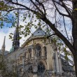 Notre Dame de Paris Cathedral — Stock Photo #37287677