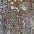 Stock Photo: Rusty metal grunge background