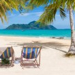 Stock Photo: Tropical beach with coconut tree