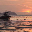 Sunrise in Rawai — Stock Video