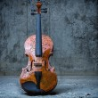 Stock Photo: Violin on concrete wall