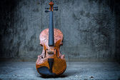 Violin on concrete wall — Stock Photo