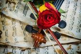 Hudba na notovém papíře housle a růže — Stock fotografie
