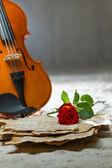 скрипка ноты и роза — Стоковое фото