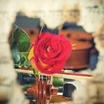 Violin sheet music and rose — Stock Photo #41415611