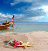 Starfish on the beach in Thailand — Stock Photo