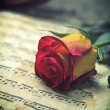 Stock Photo: Violin sheet music and rose