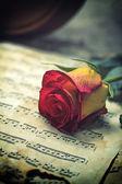 小提琴乐谱和玫瑰 — 图库照片