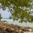 Stock Photo: Beach at Koh Phi Phi Krabi