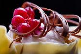 Stylish redcurrant cake with white chocolate — Stock Photo