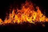 Blazing flames on black background — Stock Photo