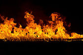 Blazing flames on black background — Stock Photo