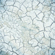Crack soil on dry season — Stock Photo