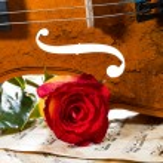 Violin sheet music and rose — Stock Photo #45151281