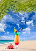 Frischen tropischen cocktail an sonnigen Strand auf den Malediven — Stockfoto