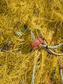 Close-up of fishing net and floats — Stock Photo