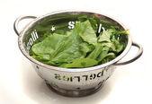 Salat in schüssel — Stockfoto