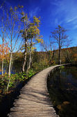 Autumn in Plitvice — Stock Photo