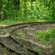 pista treno in foresta — Foto Stock