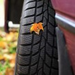 Car wheel tyre in autumn - Stock Photo