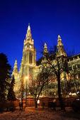Vienna's City Hall at christmas advent — Stock Photo