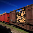 Timber train — Stock Photo