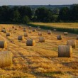 Landscape with straw bales in end of summer — Stock Photo