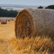 Straw bales — Stock Photo #35982181