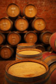 Wine barrels in wine-vaults — Stock Photo